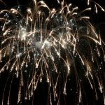 Quick Tips for Keeping Fireworks-Day Feline Friendly