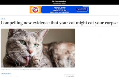 Cats eating humans redux: a clowder will devour