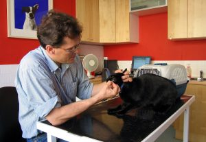 """""""Veterinary Surgeon"""" by Andrew Dunn - http://www.andrewdunnphoto.com/. Licensed under CC BY-SA 2.0 via Commons - https://commons.wikimedia.org/wiki/File:Veterinary_Surgeon.jpg#/media/File:Veterinary_Surgeon.jpg"""