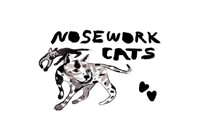 Nosework: Scent based enrichment FOR YOUR CAT!!